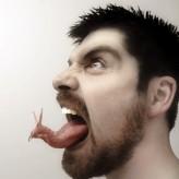 Dilin Büyüsü