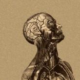 Milton Modeli Dil Kalıbı: Edimin Olmayışı