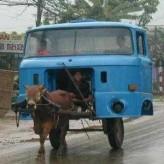 Saddam, Motor Sevici (2)