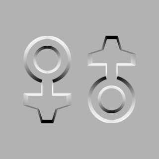 Kadın ve Erkek