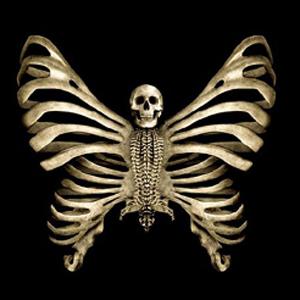 Kelebekler ve Sürüngenler