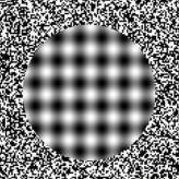 Optik İllüzyon