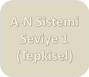 A-N Sistemi [Bej] Seviye Bir (Tepkisel)