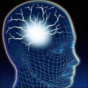 Beyin Gücü / Karl ALBRECHT – II