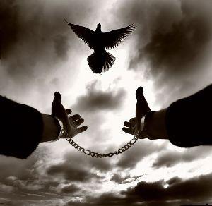 Özgürlük Savaşçıları – 2