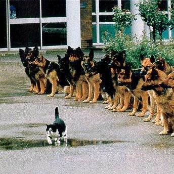 Özgüvenli misin?